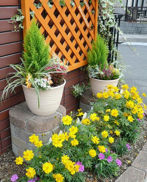 P1340727_花台に寄せ植えのある門前花壇