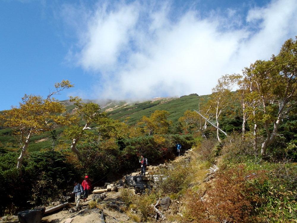 登山道にて