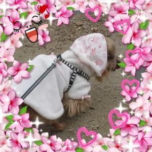桜色のお洋服