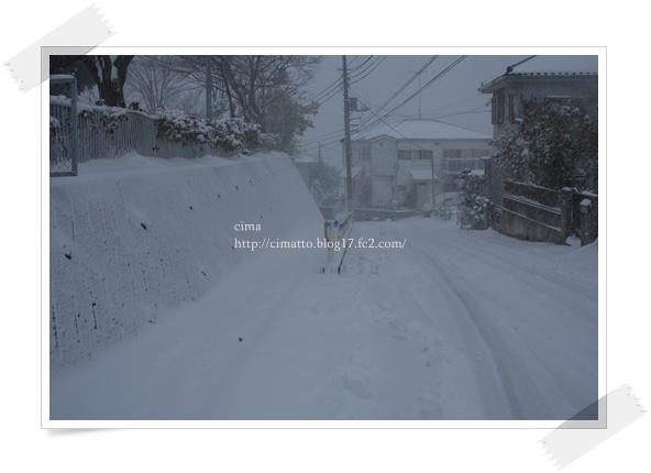 20140213_1.jpg