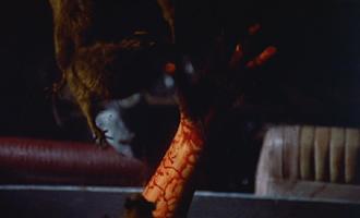 猛獣大脱走:画像2