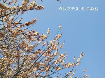 201203201444000_convert_20120328223358-2.jpg