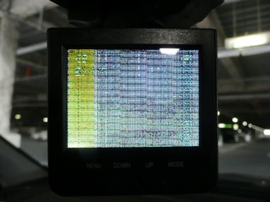 P1140566.jpg