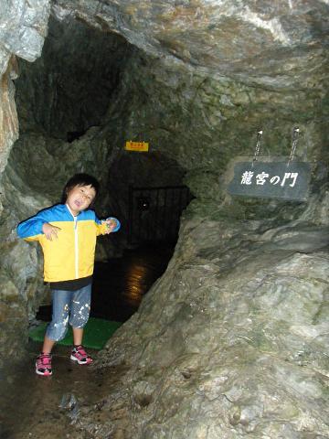 2011_0831ココバニラヘ0019