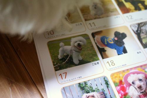 カレンダー5