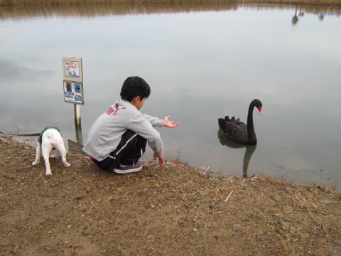 kokucyo_293.jpg