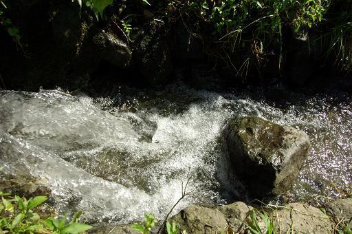 110924-14water01.jpg
