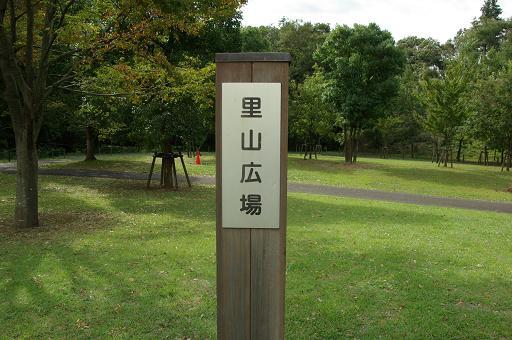 111001-03satoyamahiroba.jpg