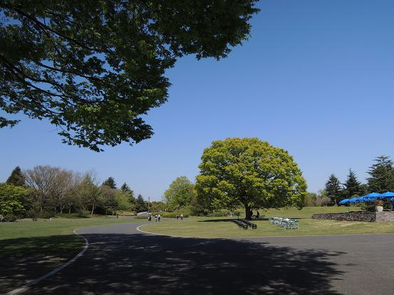 130413-13park02.jpg