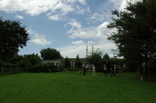 110911-23hirukawa view02