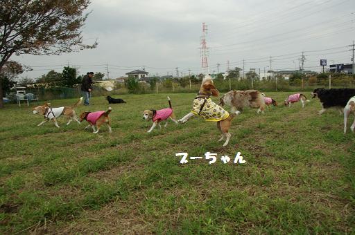 111009-30oyatsu time03