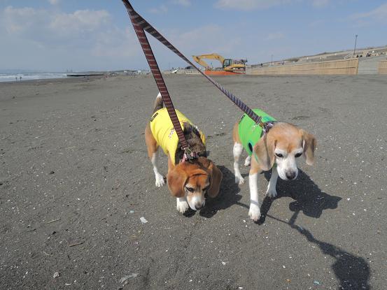 130302-29cookychara walk on the beach01