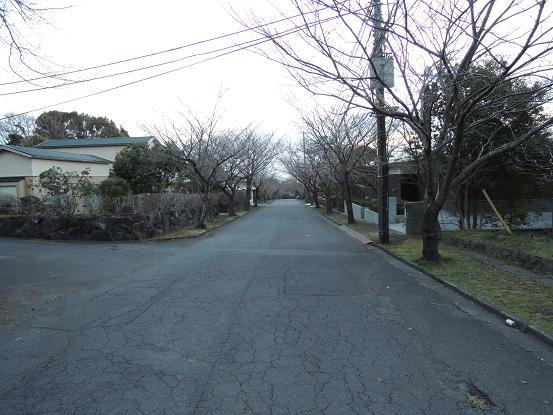 130316-01tsuribashi way01