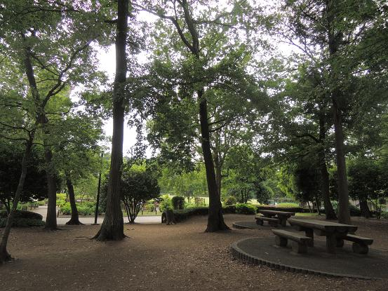 130525-03N park01