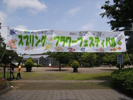 130525-08N festival