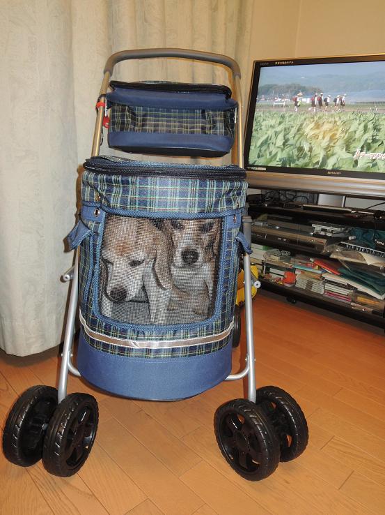 130629-03new cart02