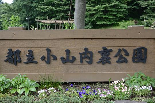 130629-01oyamadairi park
