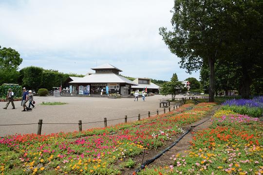 130706-14park view01