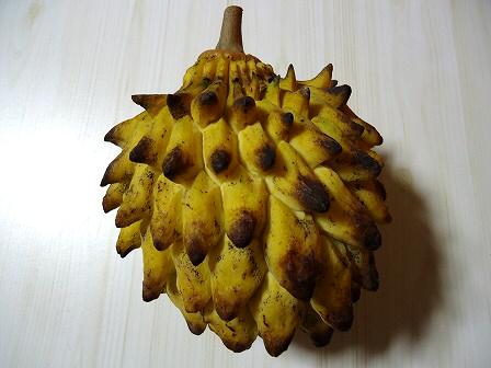 伯爵夫人の果物