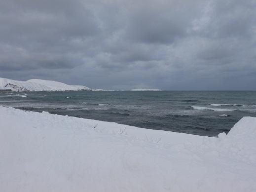 120129浜中よりスコトン岬トド島をのぞむ