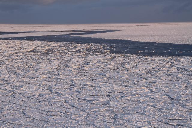037ピンクに染まる流氷JPG