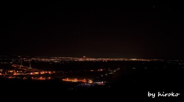 299展望台からの夜景