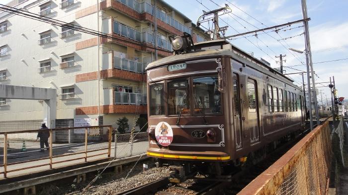 DSC04343 (47)