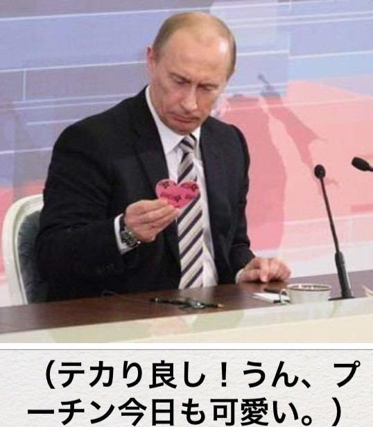 プーチンかわいい