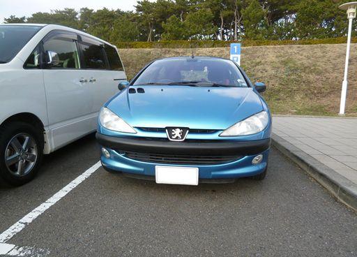 Peugeot_206_R.jpg