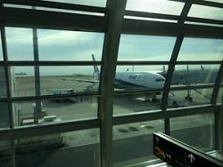 羽田空港。さあ出発!