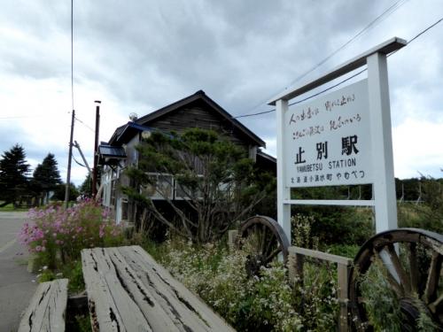 img2014-9-hamakoshimidusohuto04.jpg