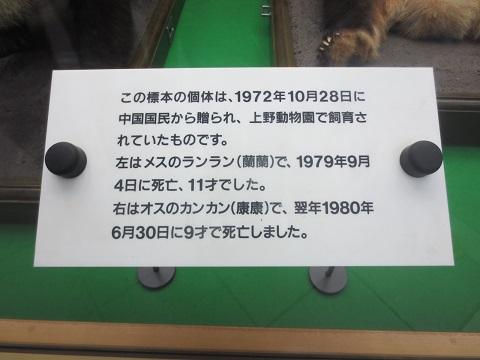 0913TMZOO50.jpg