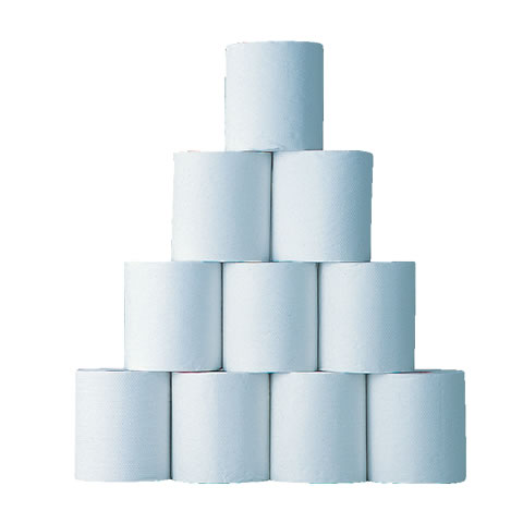 toiletpaper-100m_b.jpg