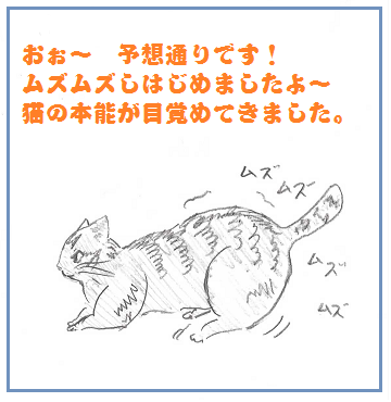 2013121303.png