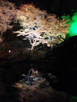 円通院夜景