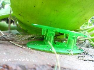ウルトラ 巣のアリ。。。翌日-2