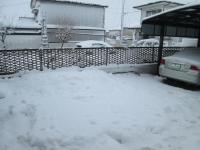 14年2月16日積雪2