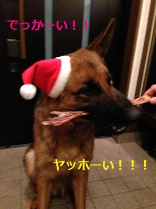 はい、プレゼント!