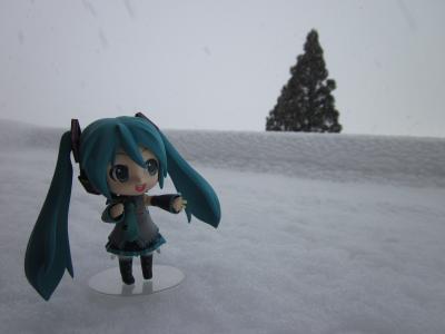 野外撮影(冬)2011