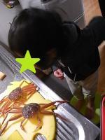 セコ蟹とご対面~