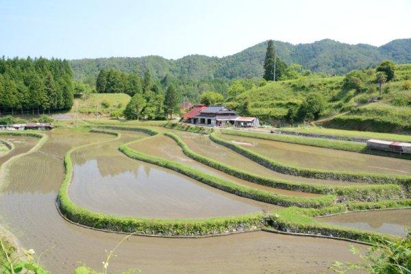 1 周東町松尾の棚田