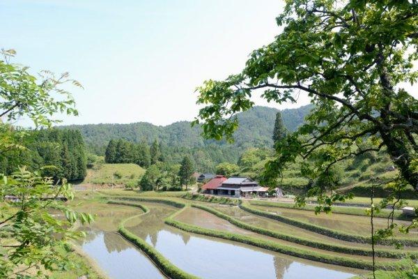 2 周東町松尾の棚田