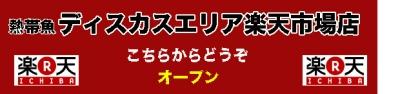 2014-2-6楽天