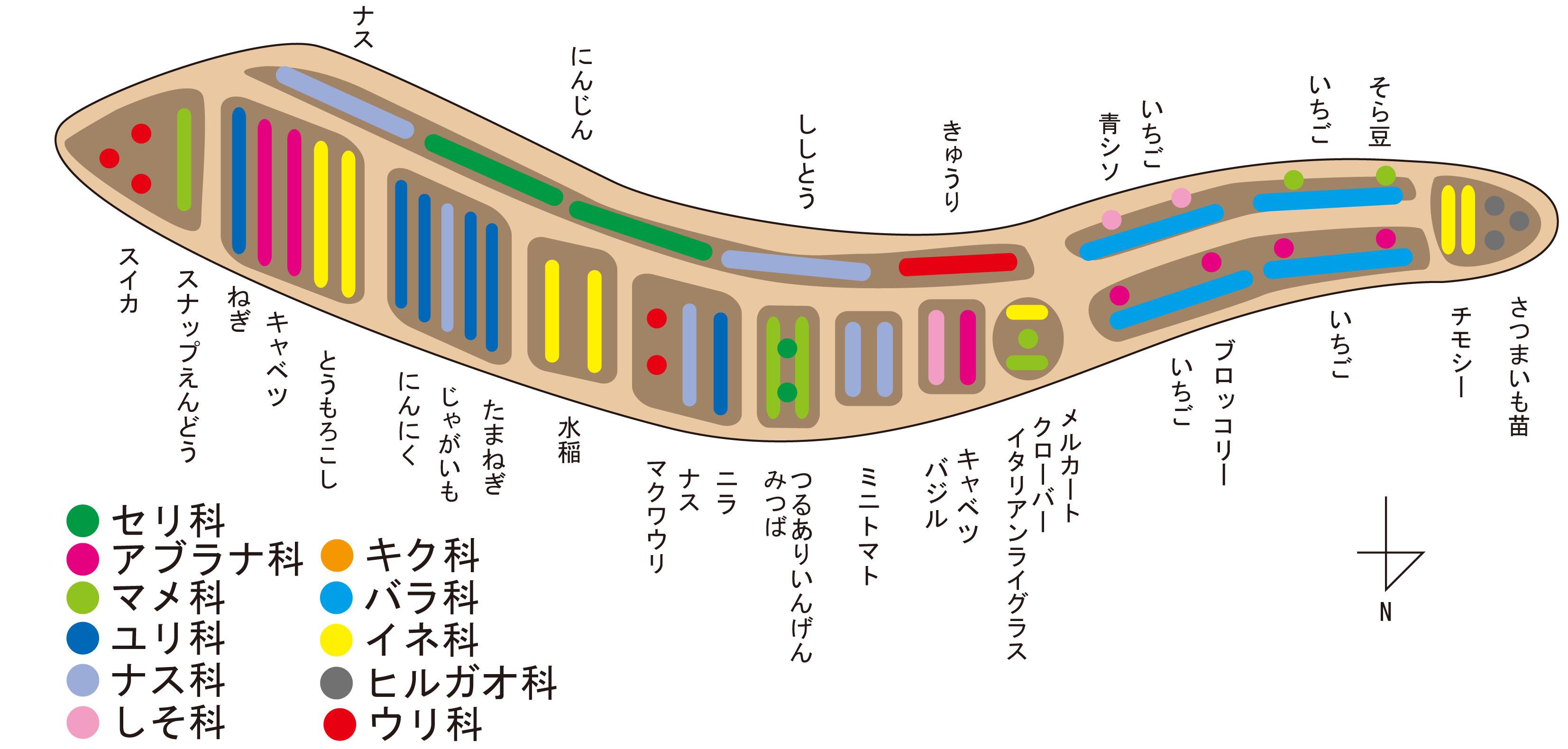 2012 春 作付け表