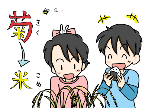 米(菊)2(変換後)