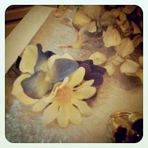 blooming1110.jpg