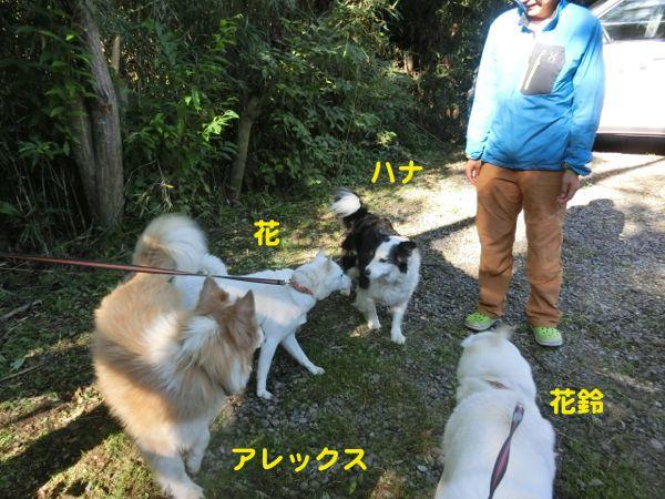 2014.9.9 ワンズ1