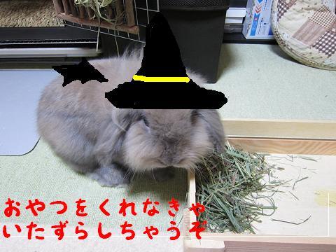 み~た~な~