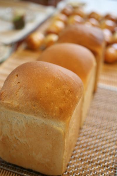 breadレッスン2011.10.19-1