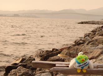 中海で。。。